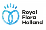 Royal FloraHolland 2