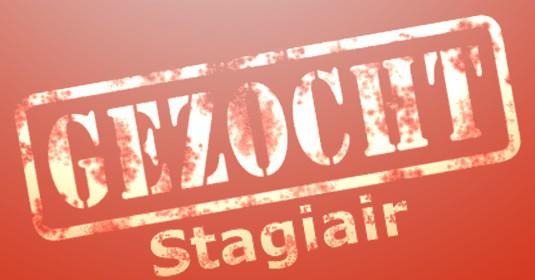 2012  Keurmerk voor Stagiaires voor bedrijfsleer bedrijven